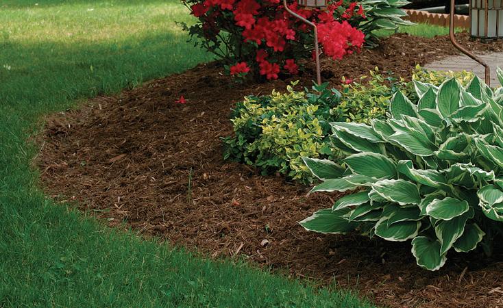 Voordelen van het gebruik van houtsnippers in de tuin